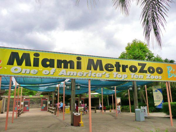 Miami_MetroZoo.jpg